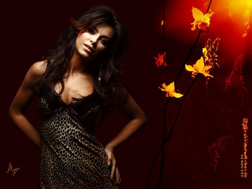 Ani Lorak (8 wallpapers)